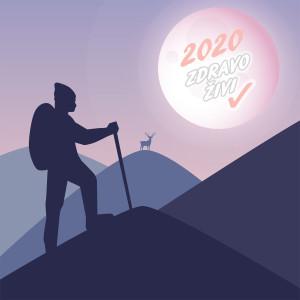 Voscilnica_2020_ZZ copy