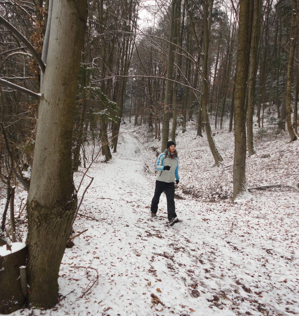Zimski sprehod1